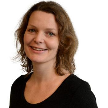 Frilansjournalist Til Bergfald