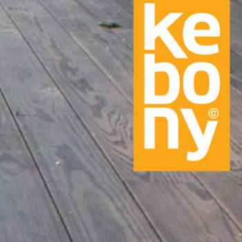 Kebony – Fra Idé Til Industrialisering