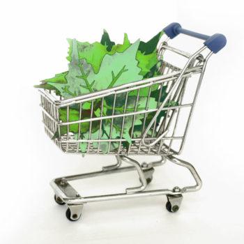 Strengere Miljøkrav For Offentlig Innkjøp